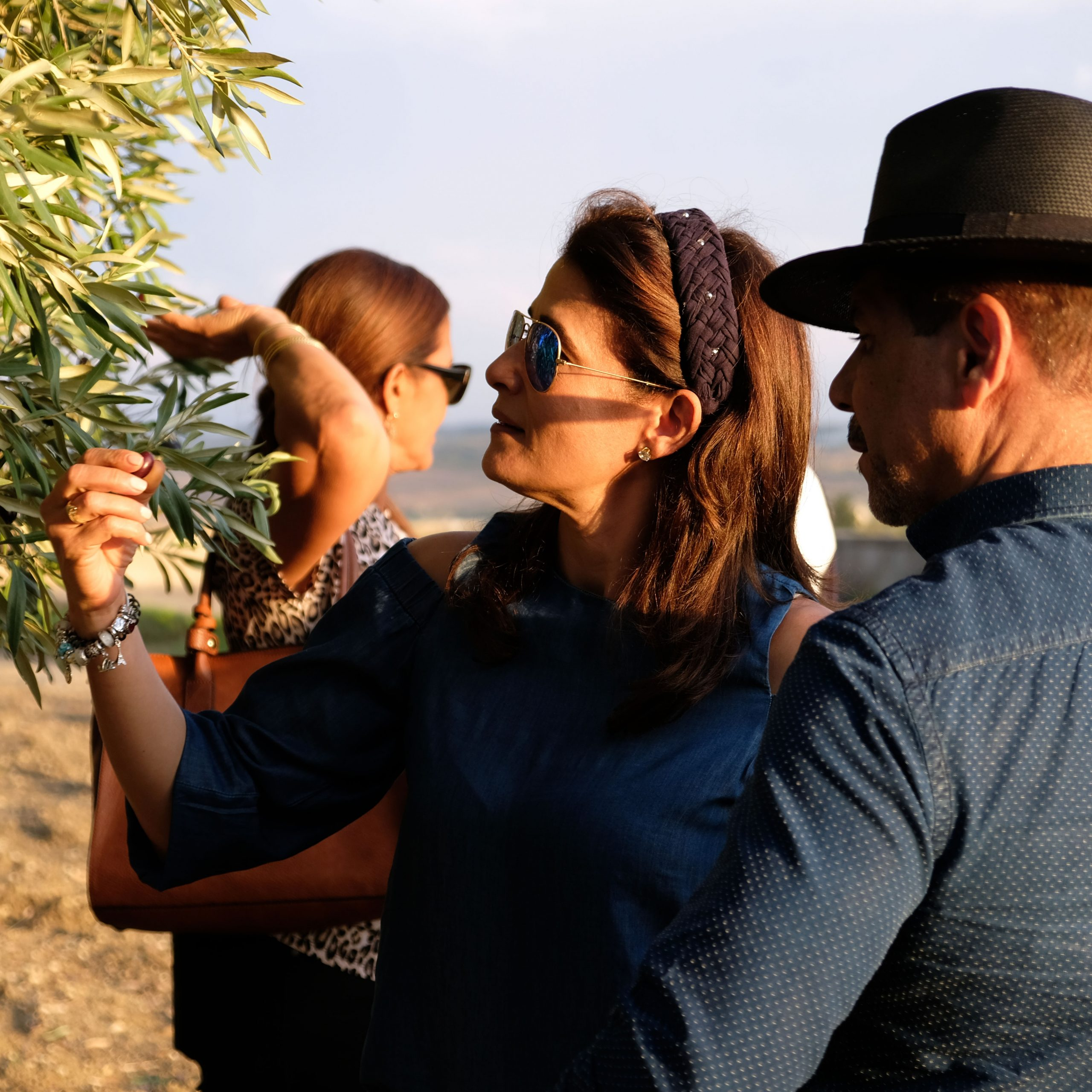 donna e uomo ammirano albero di olivo siciliano